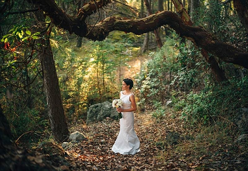 2015 Weddings in review - bride in forest